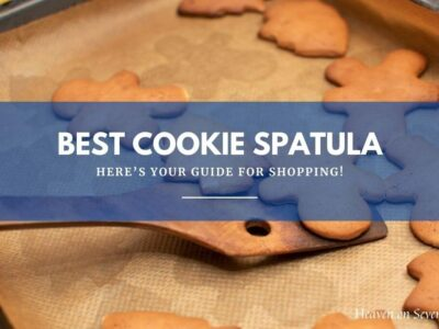 Best Cookie Spatula